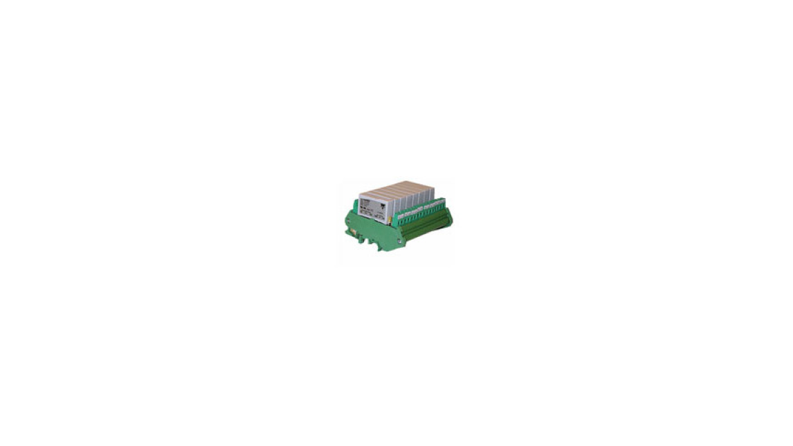 Logo Solid State Opto-isolated Static Relay Modules