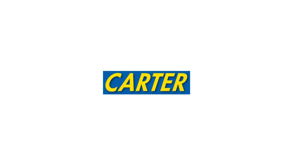 Logo Carter Cam Followers