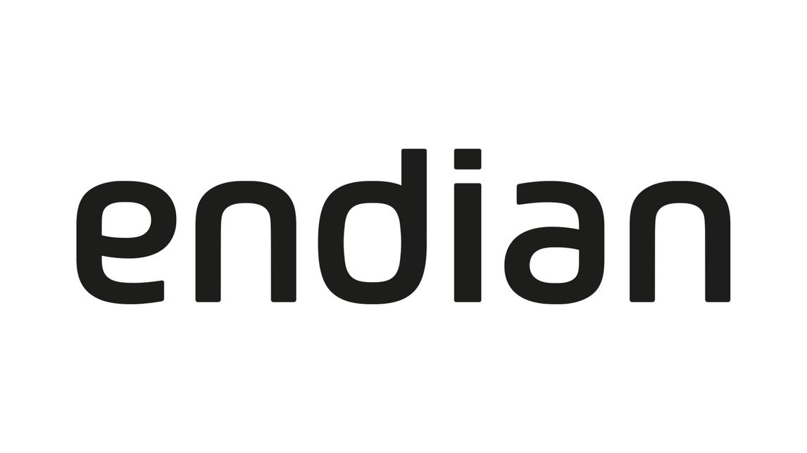 Logo Endian