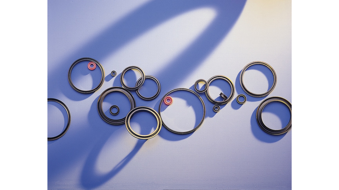 Logo Gaskets and sealing solutions