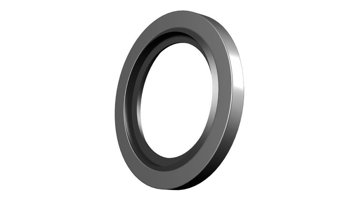 Logo BS-Ringe