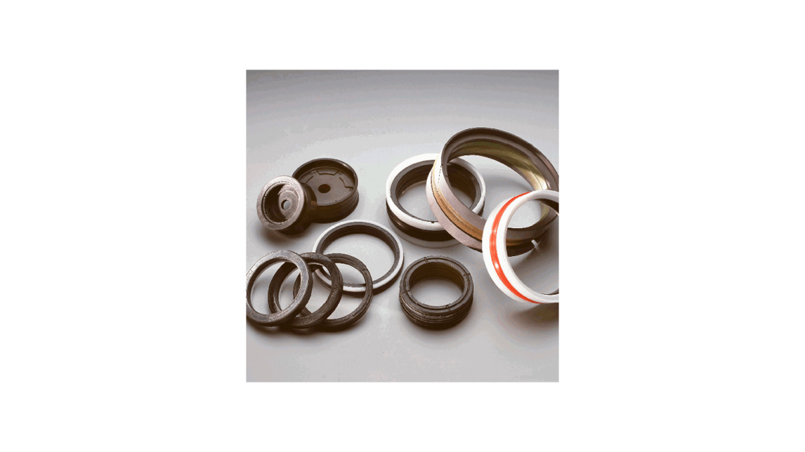 Logo Hydraulic seals