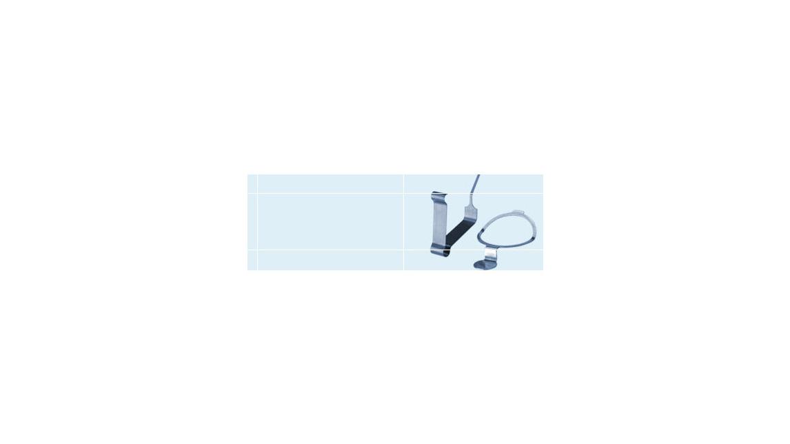 Logo Blattfedern