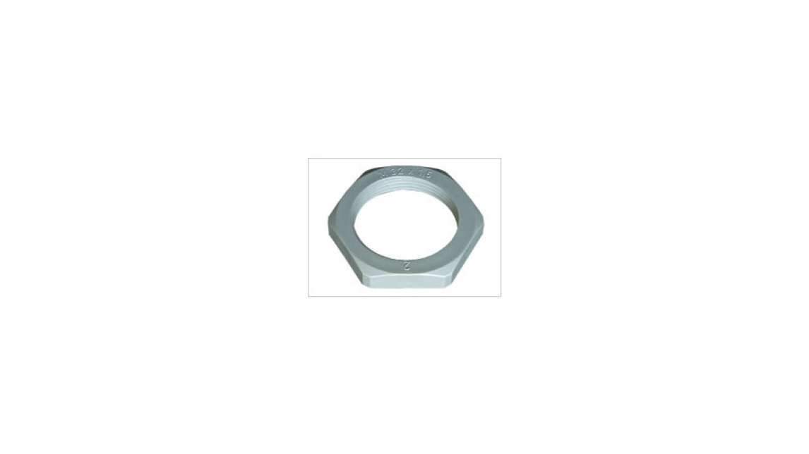 Logo EPN 355 Hexagonal Locknuts flangeless