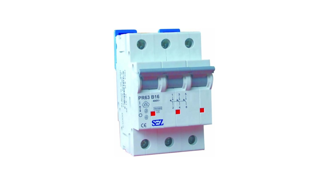 Logo Miniature Circuit Breakers PR 60