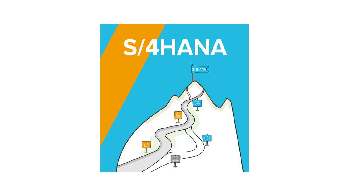 Logo SAP S/4HANA System Conversion