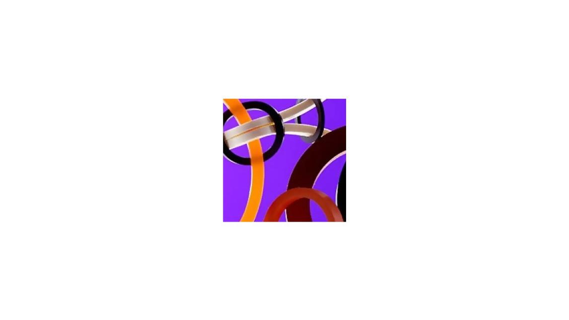 Logo SCHLAUCHRINGE
