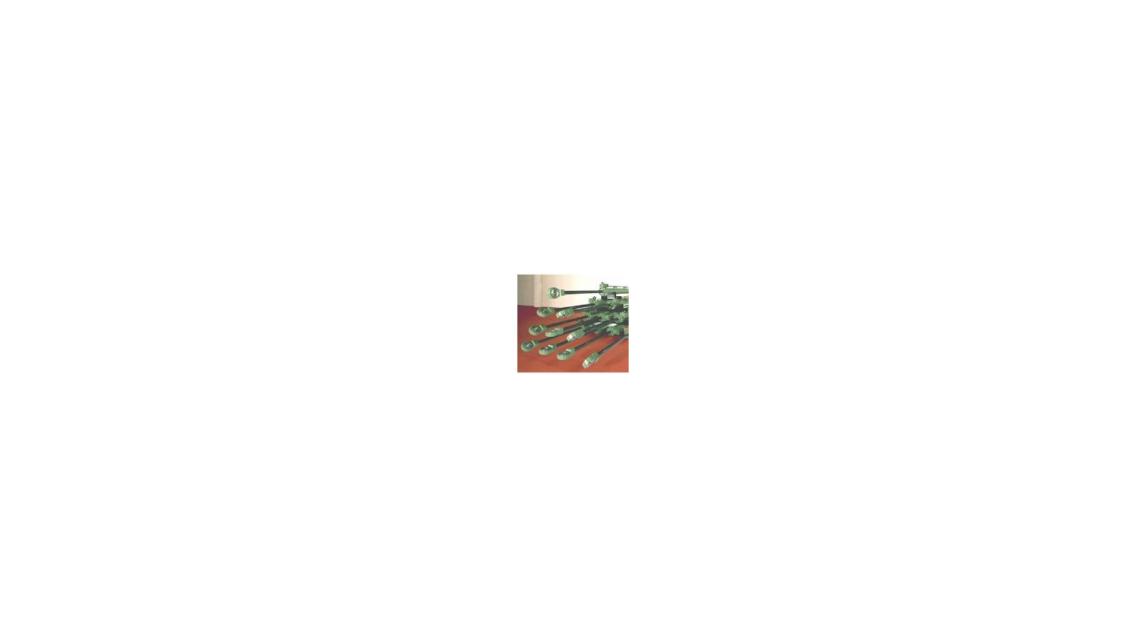 Logo Surface Coatings for Piston Rods / Shaft