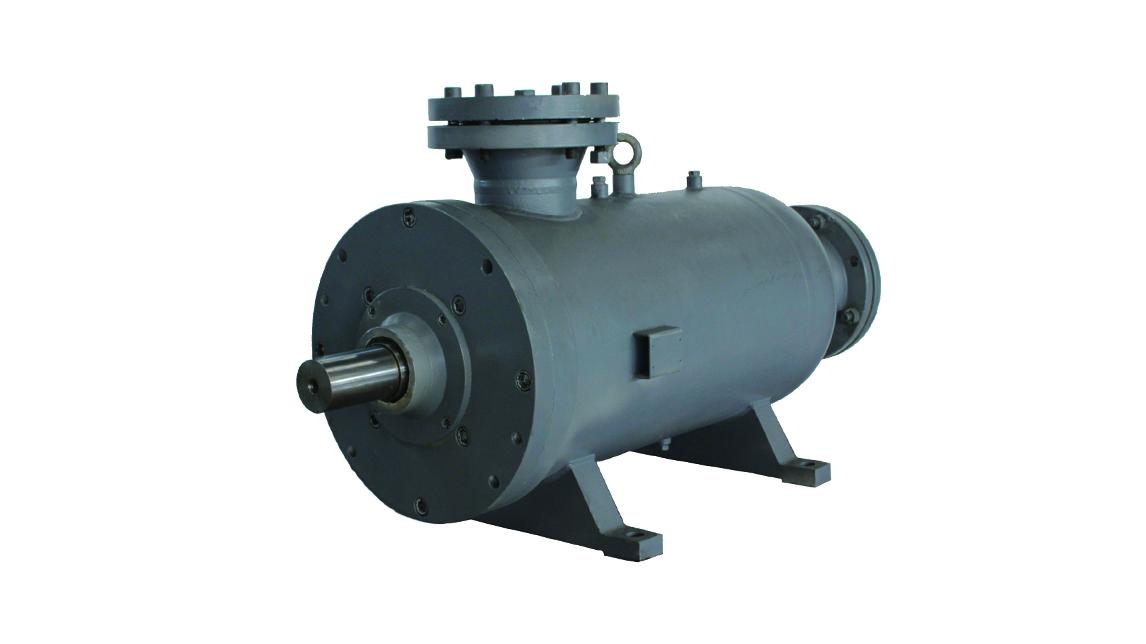 Logo API  screw pumps