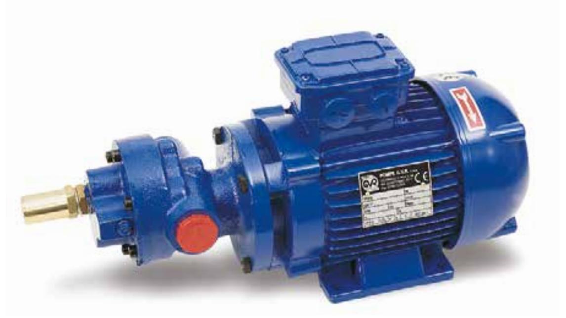 Logo BMF - BCF Close-coupled gear pump