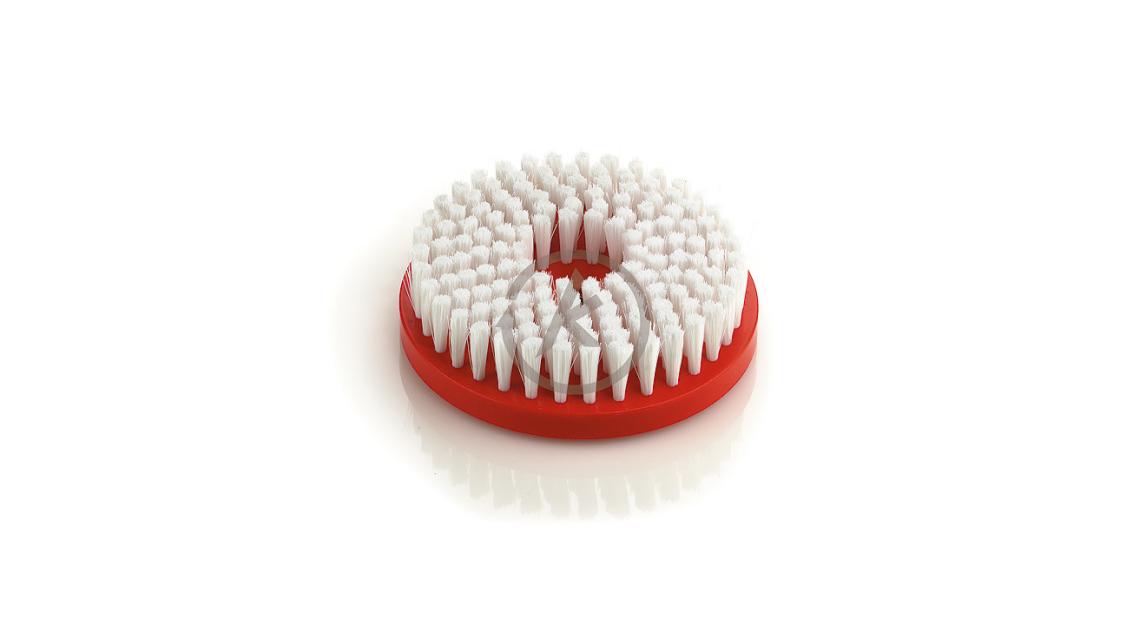 Logo Disc Brushes