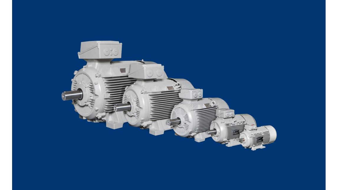 Logo low-voltage AC-Motors