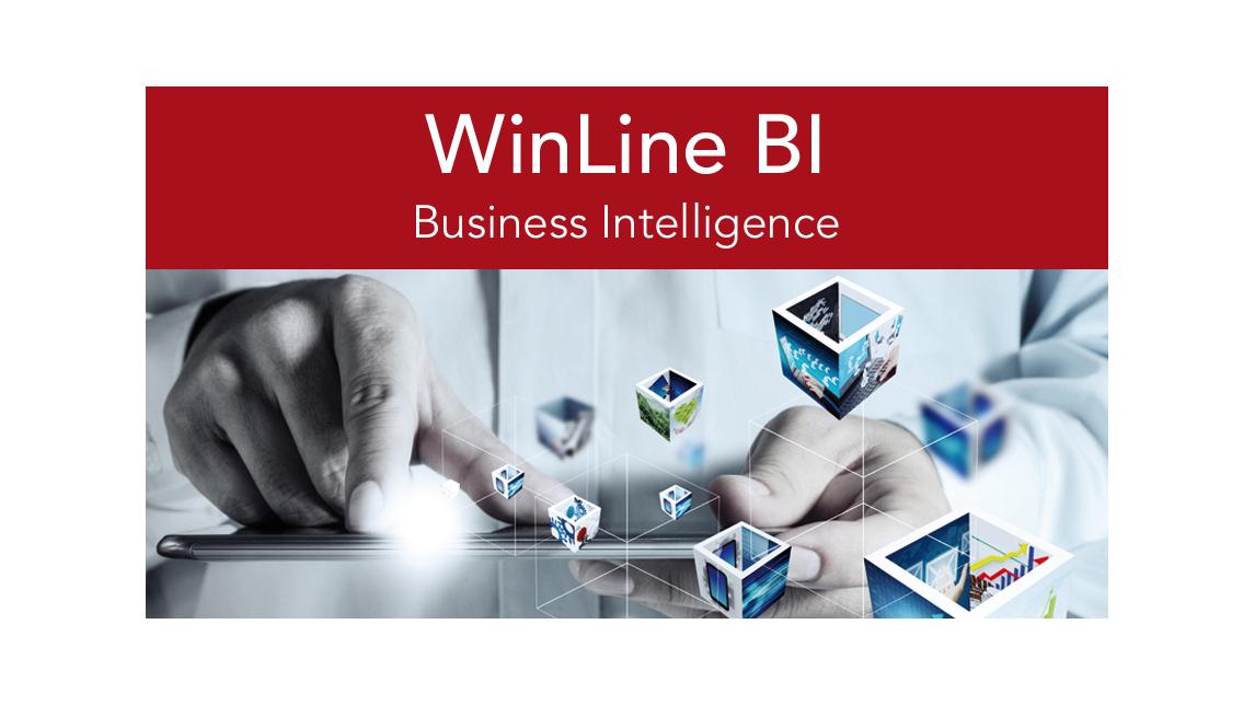 Logo WinLine BI - Business Intelligence