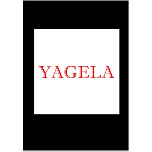 Wuxi Yagela Nonferrous Metal Tube F