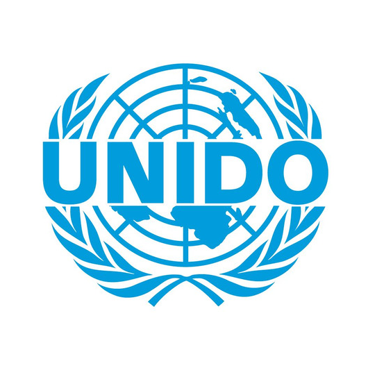United Nations Industrial Development