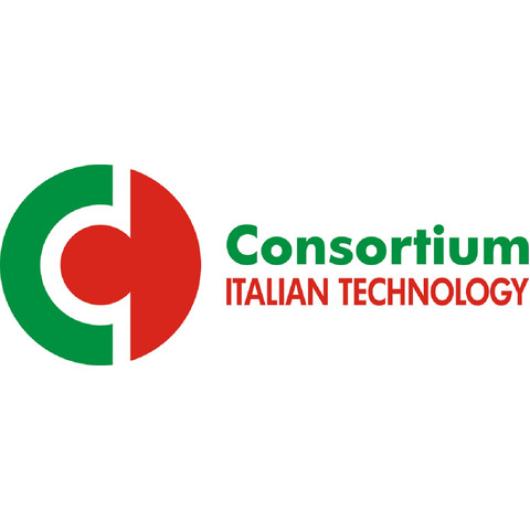 CONSORTIUM ITALIAN TECHNOLOGY