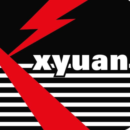 Yangzhou Xinyuan Electric