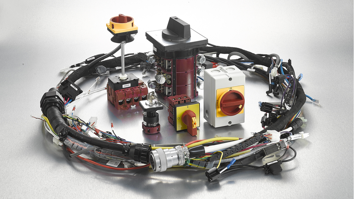 Logo Rotary cam switch and wire harness