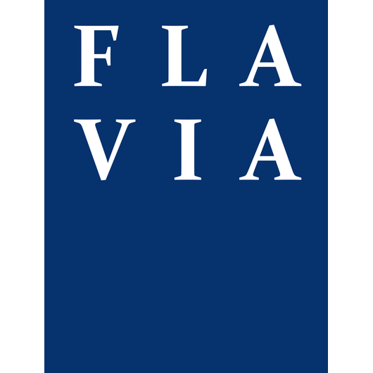 FLAVIA IT-Management