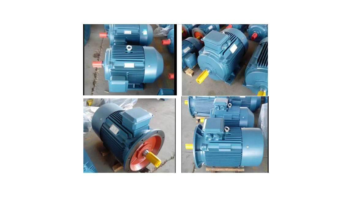 Logo YE2/YE3 High Efficiency Motor