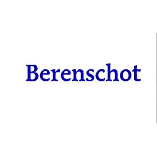 Berenschot Groep