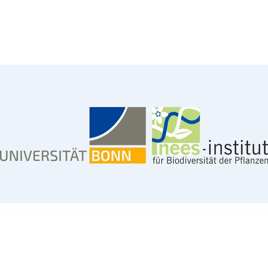 Universität Bonn, Nees-Institut