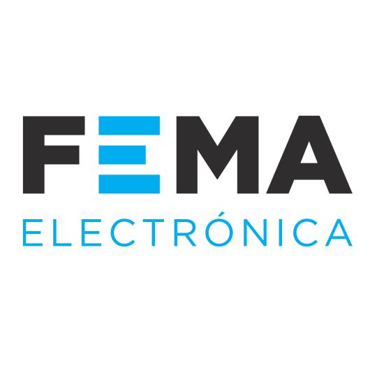 FEMA Electronica