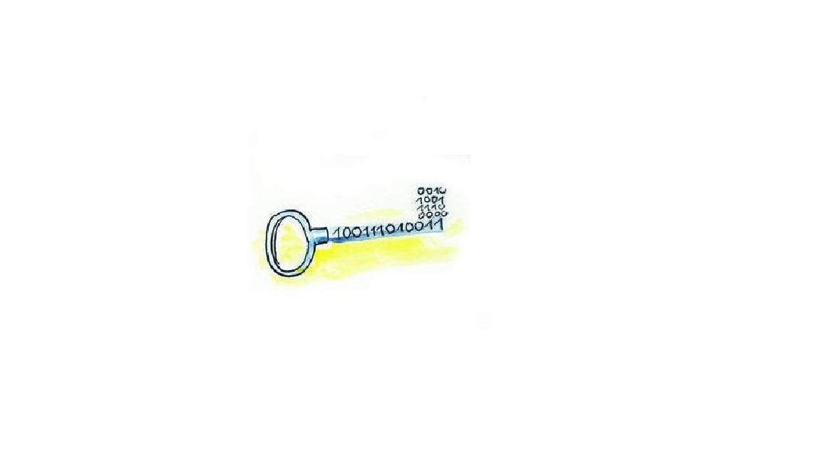 Logo tetraguard .disk