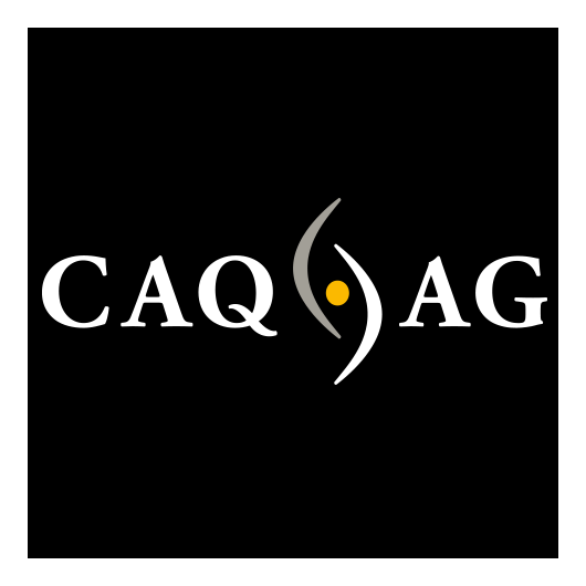 CAQ Factory Systems