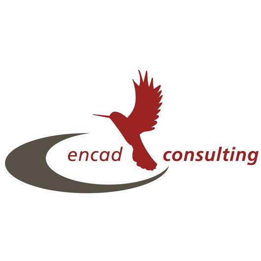 encad consulting