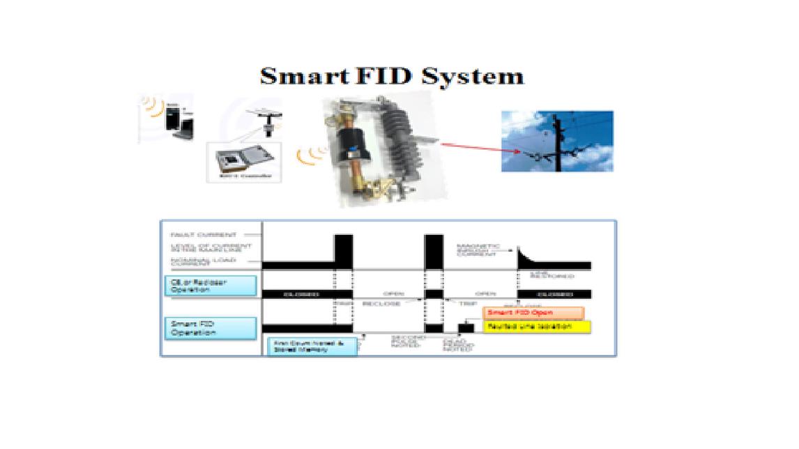 Logo Smart FID System