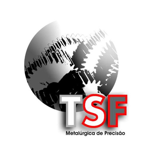 TSF Metalurgia de Precisao