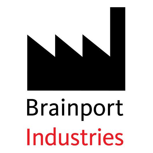Brainport Industries
