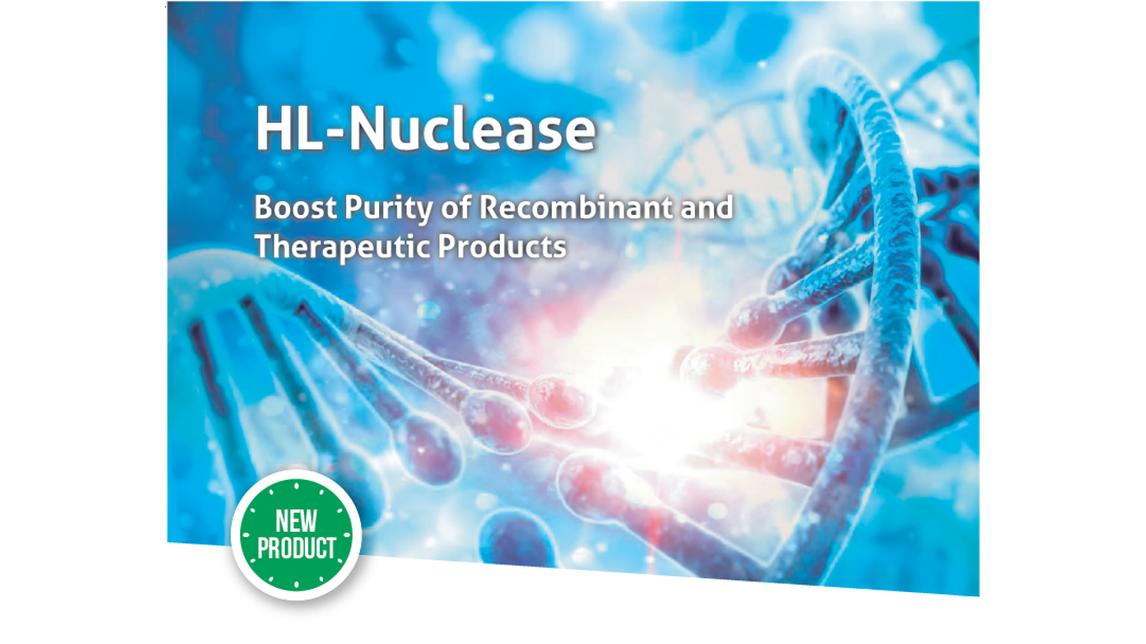 Logo HL-Nuclease
