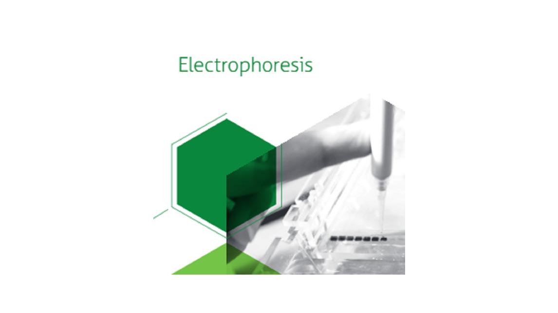 Logo Gel Electrophoresis