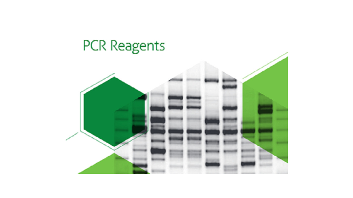 Logo PCR REAGENTS