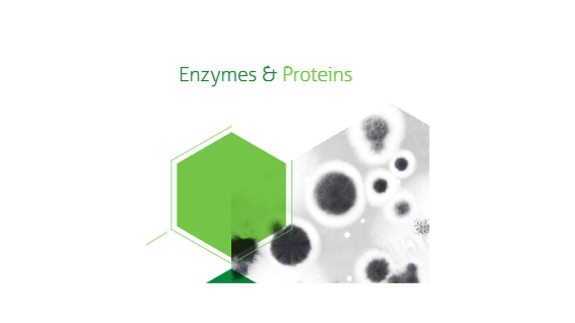 Logo ENZYMES & PROTEINS