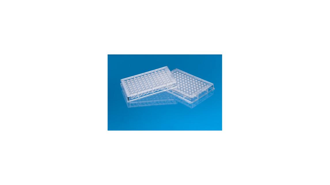 Logo Plastic disposables