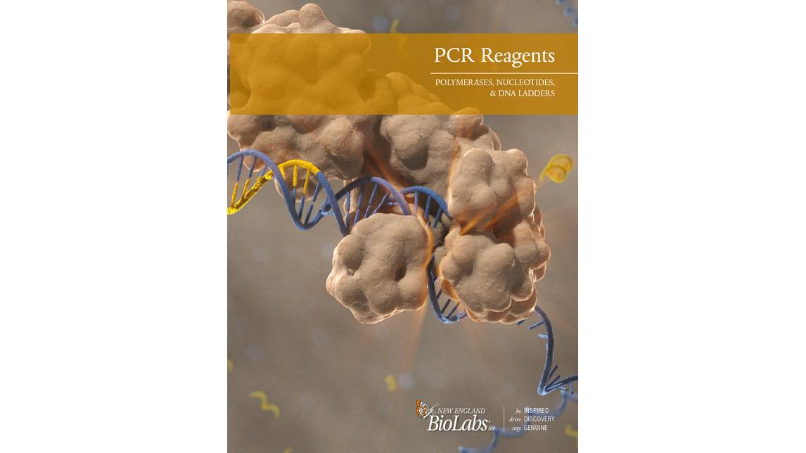 Logo PCR, Polymerases & Amplification