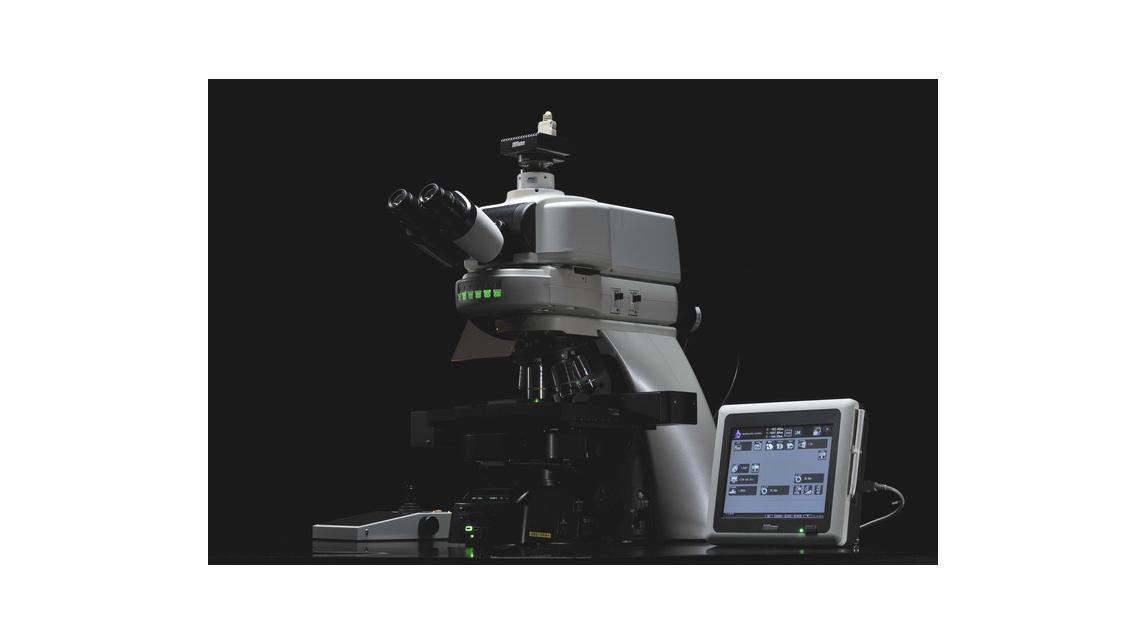 Logo Aufrechtes Forschungsmikroskope: Nikon Ni-Serie