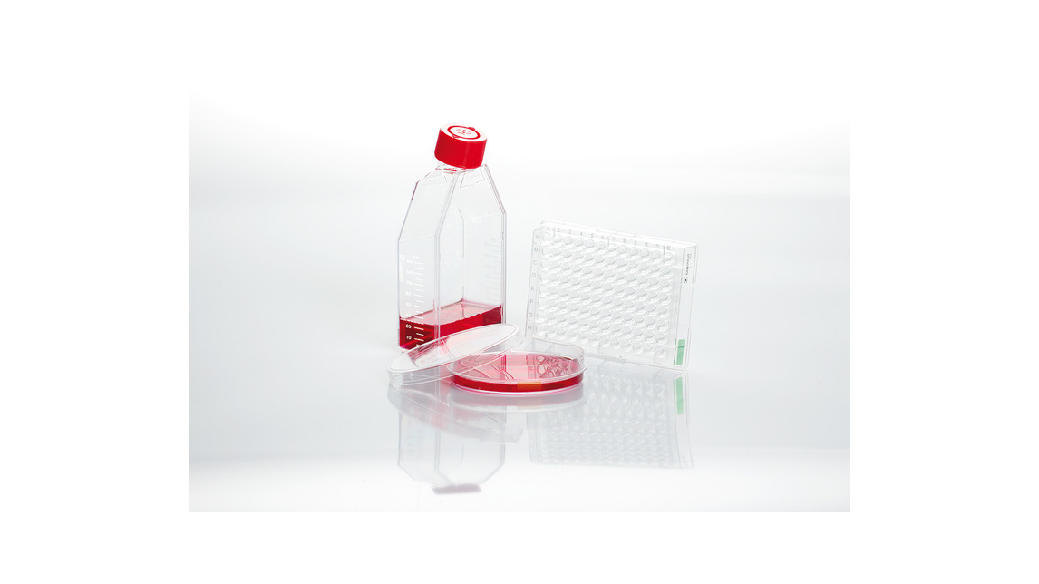Logo Cell and Tissue Culture