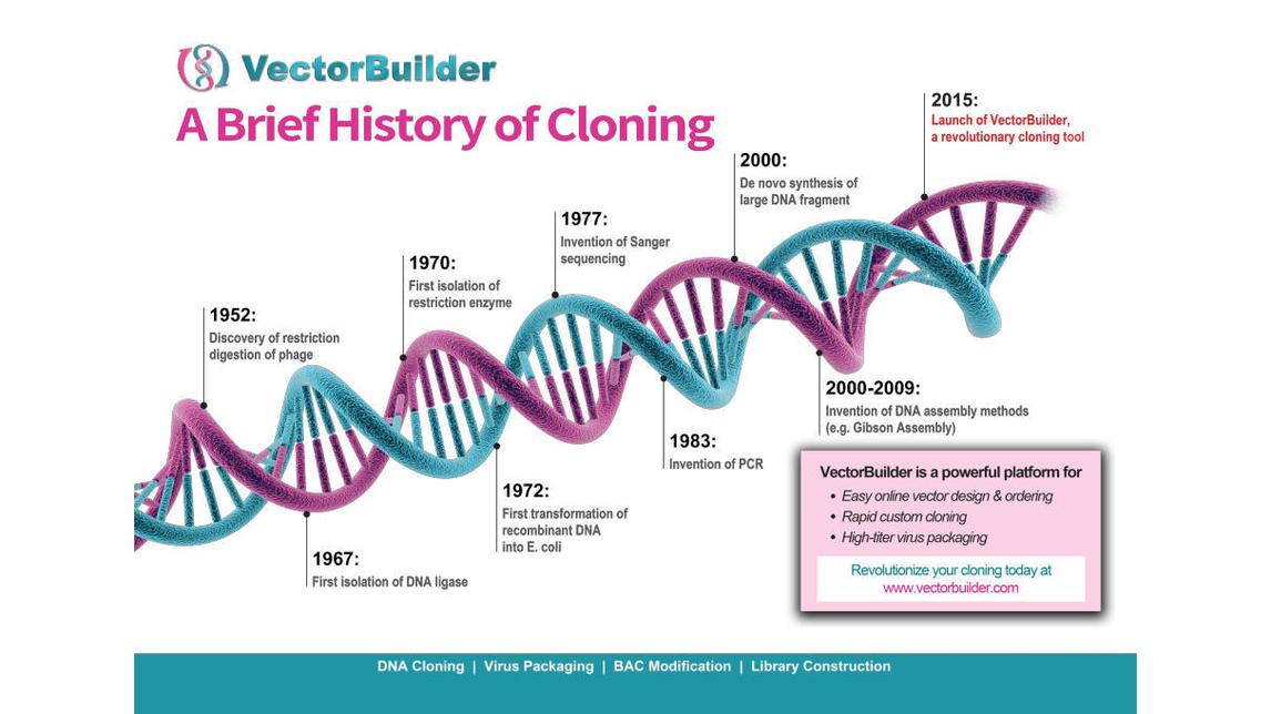 Logo Maßgeschneidertes Klonieren