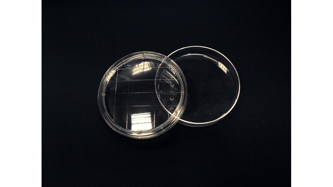 Logo Plastic labware