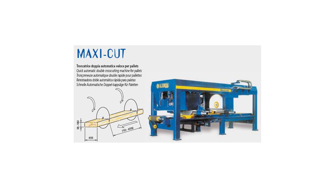 Logo Maxi-cut