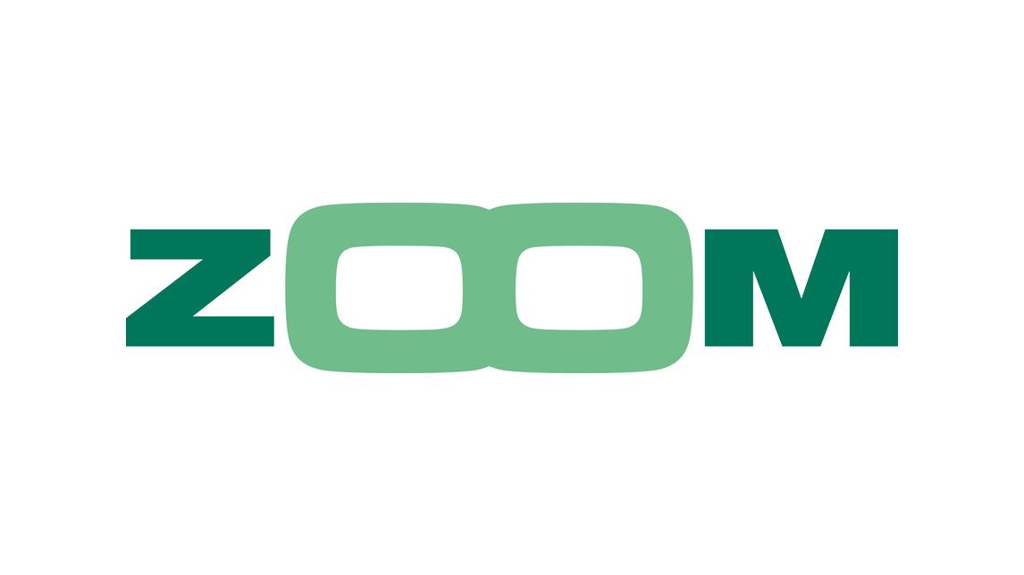 Logo ZOOM - Kontrollsystem