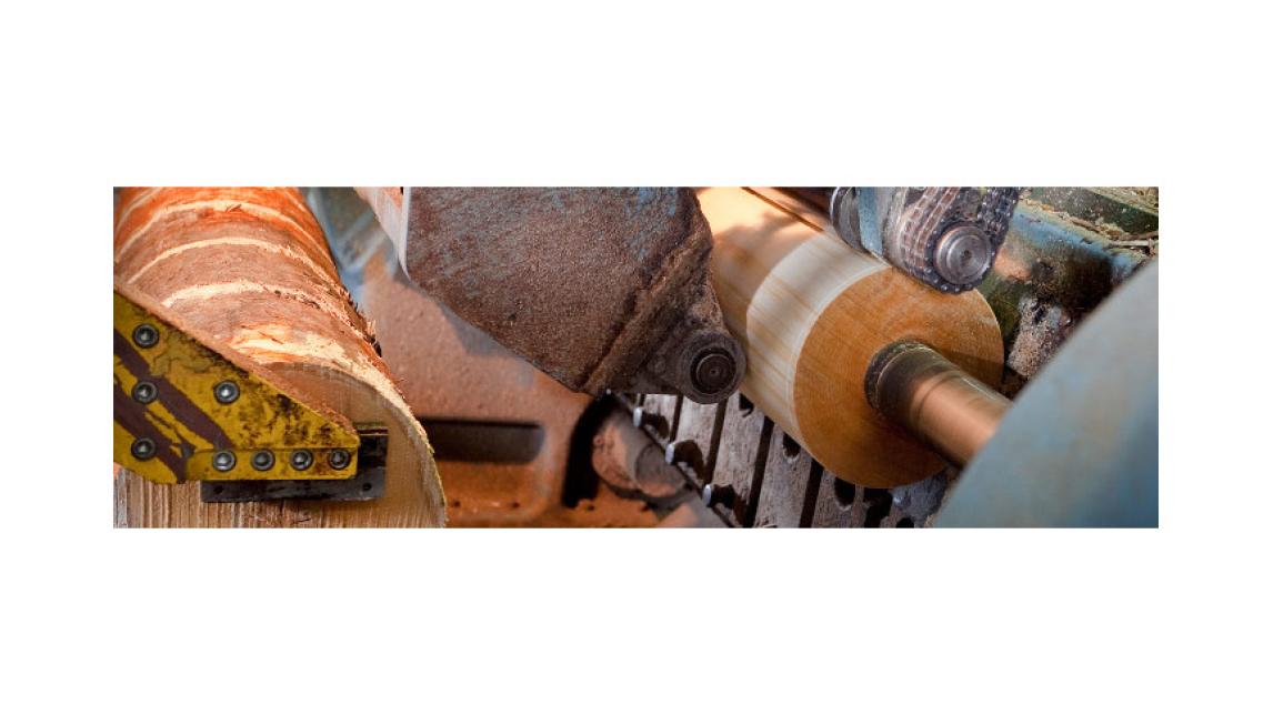 Logo Veneer Peeling machinery