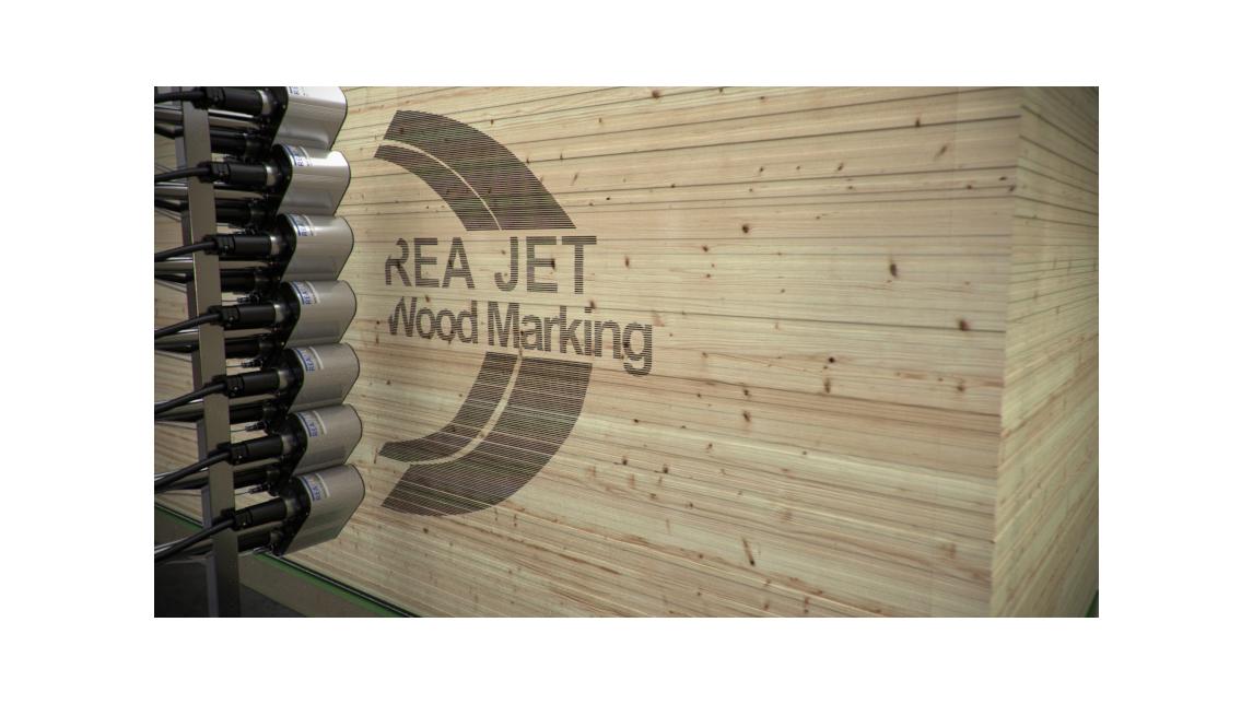 Logo Large Character Ink Jet Printer (DOD)