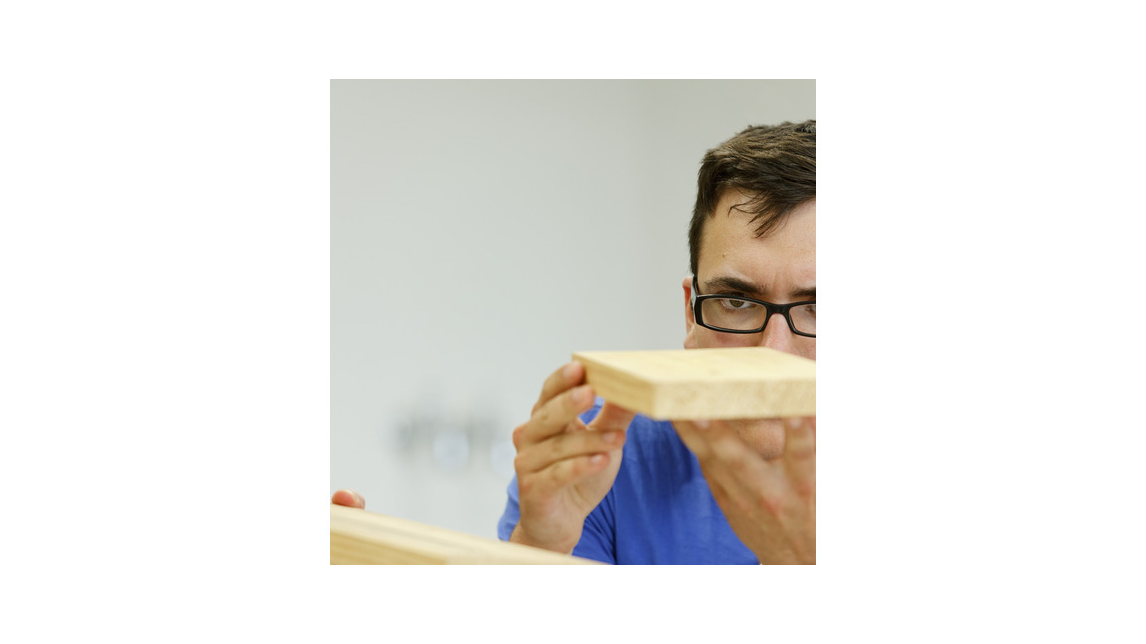 Logo Bachelor Programme in Wood Technology