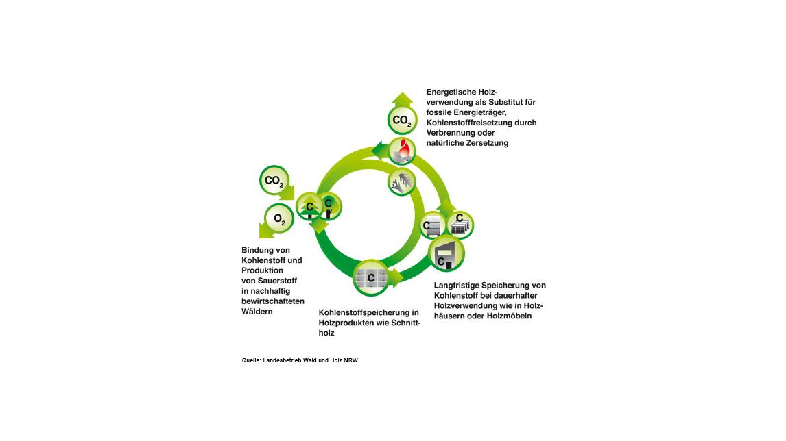 Logo Klimaschutz und Nachhaltigkeit
