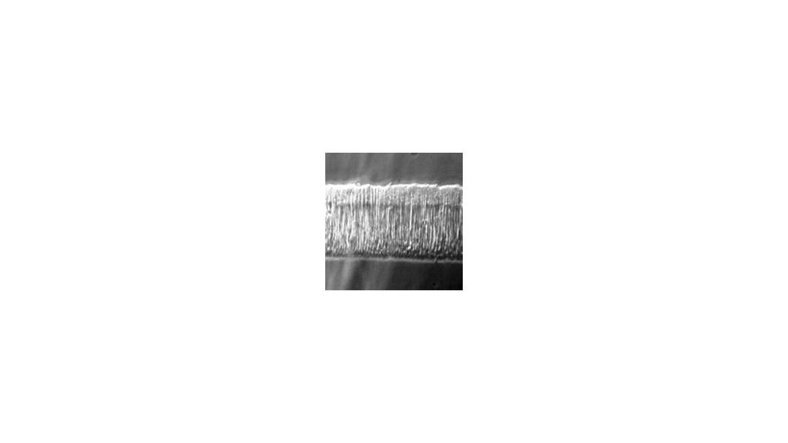 Logo Sratch resistant coatings